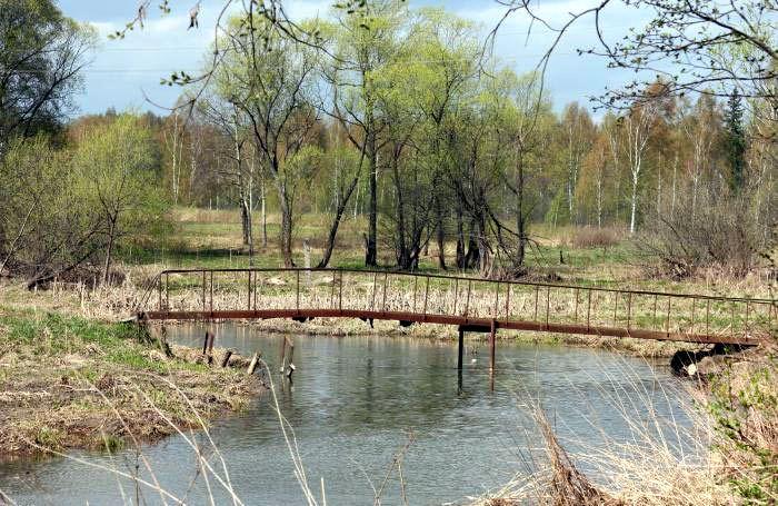 Река Пажа около хотьковского родника
