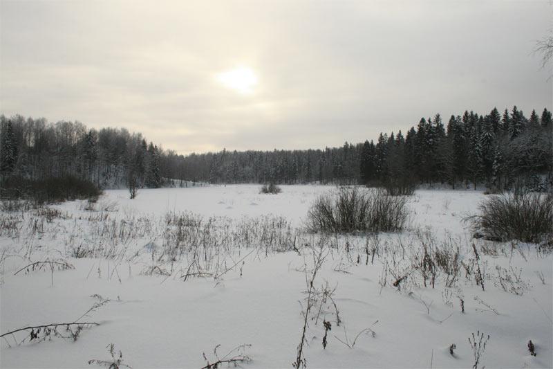 Река Воря недалеко от Абрамцева