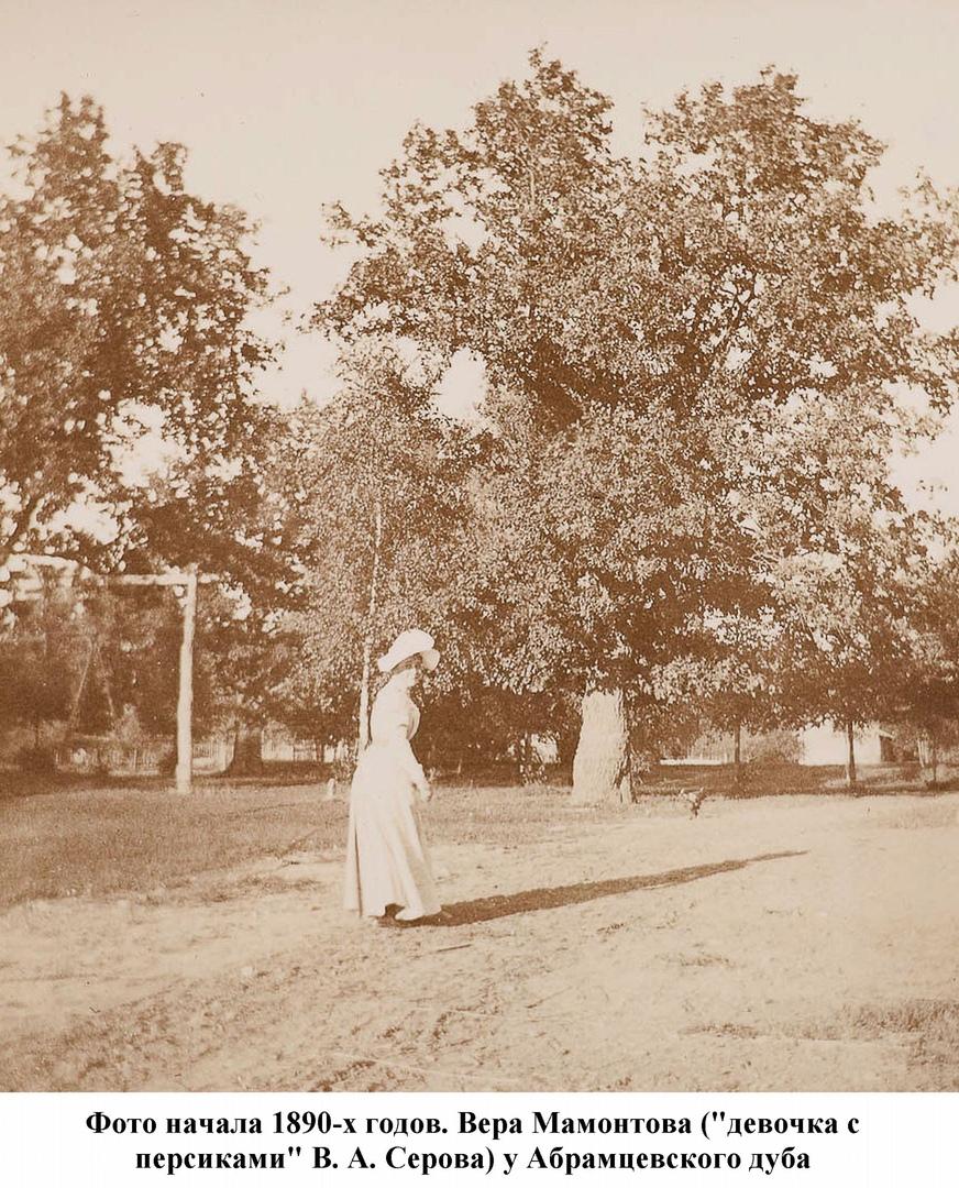 Вера Мамонтова около Абрамцевского дуба. 1980-е годы